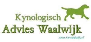 KA-Waalwijk logo